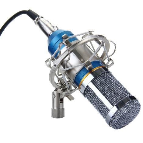 The BM-800 studio mic